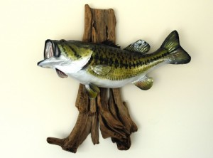 large-mouth-bass